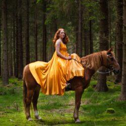 фильм о лошадях
