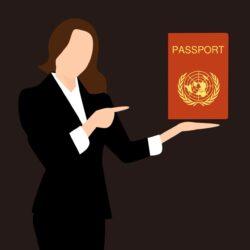 электронный паспорт в москве