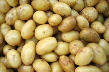 картофельная экономия