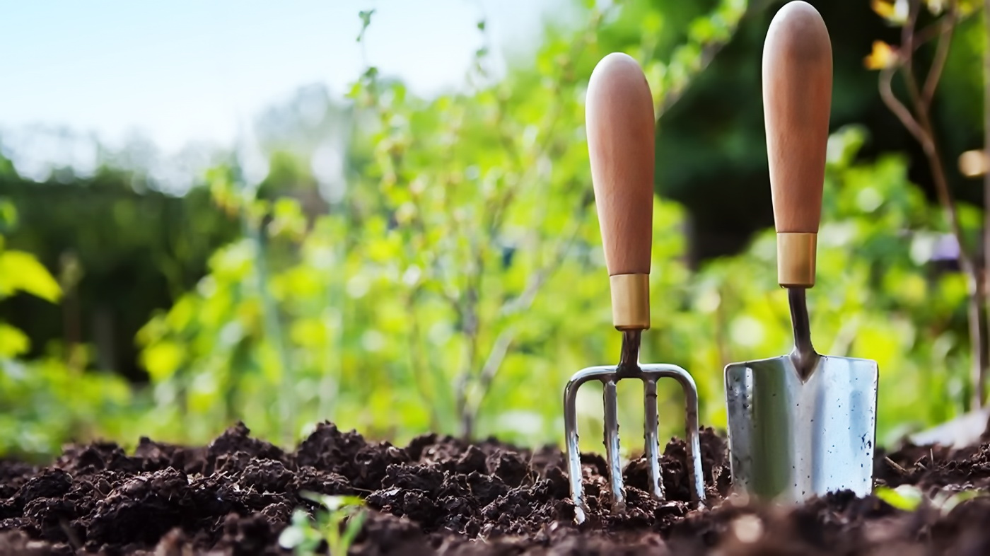 огороде без боли в спине