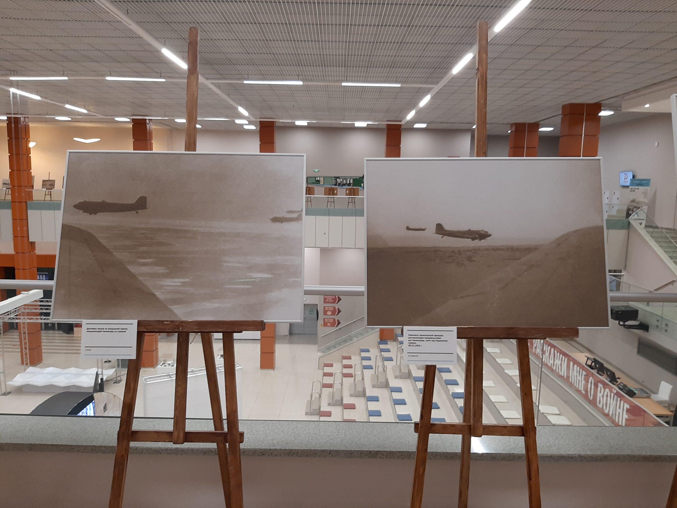 выставка в петербурге